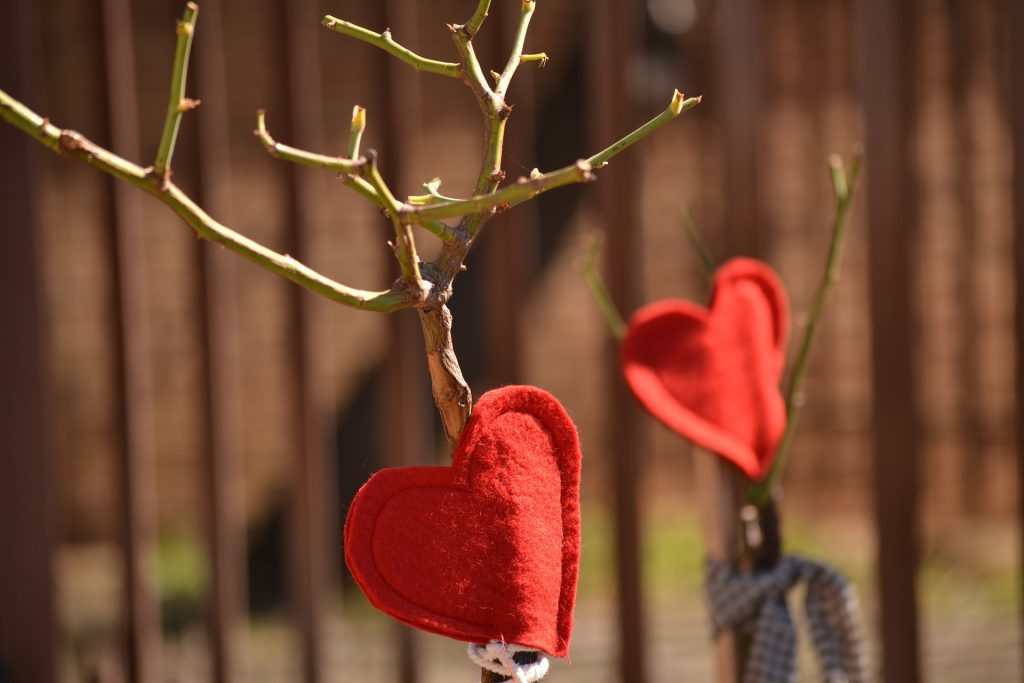 Red Hearts on Tree